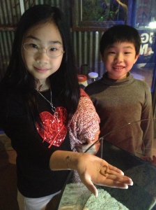 Vanessa and Lucian with mealworms at the Sydney Wildlife Centre